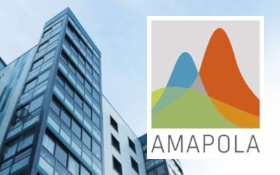 Nouvelle formation Amapola