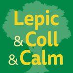 Références études énergétiques - MOA Lepic&Coll&Calm